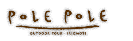 【公式】西表島のカヌー&トレッキングツアーPOLEPOLE(ポレポレ)